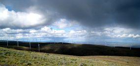 Wind farm and rain